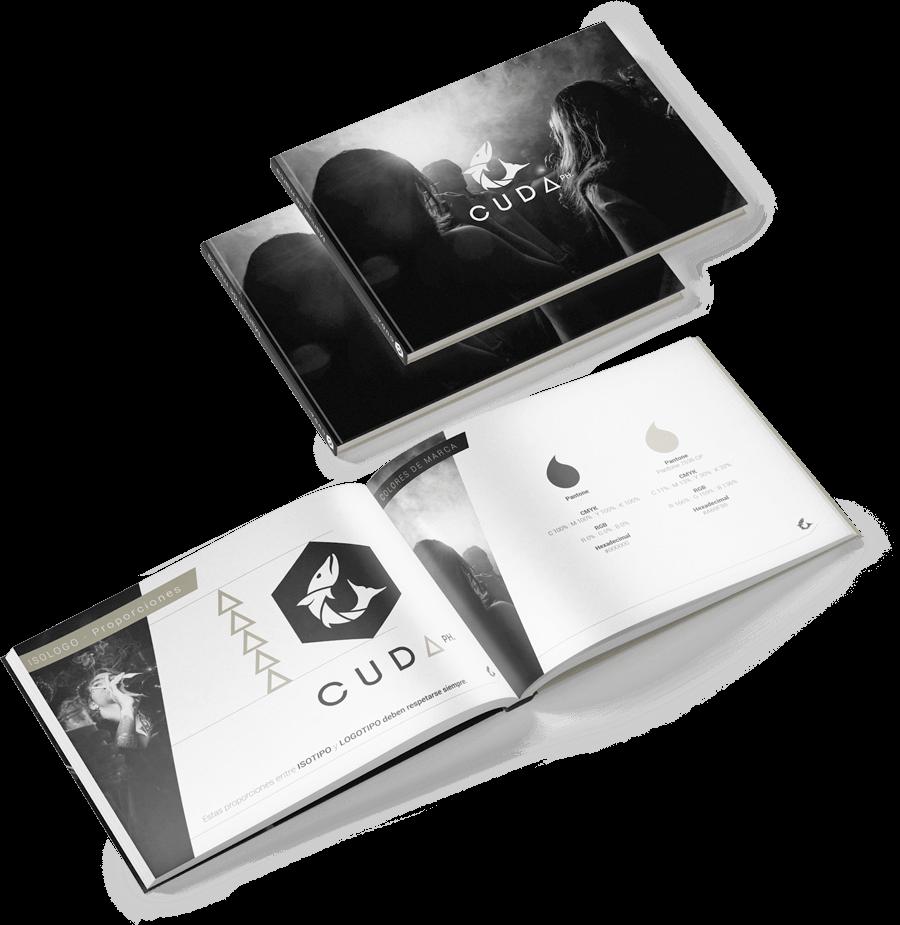 Qualiaris Branding Mockup